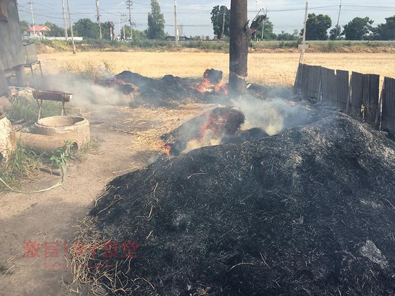 『クルアガンナー』の藁焼き現場