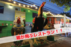 鶏肉が飛ぶ!?フライングチキンレストランの謎を追え!!